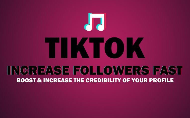 buy tik tok followers